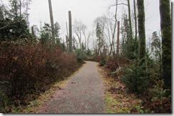 Vancouver December 2014 089